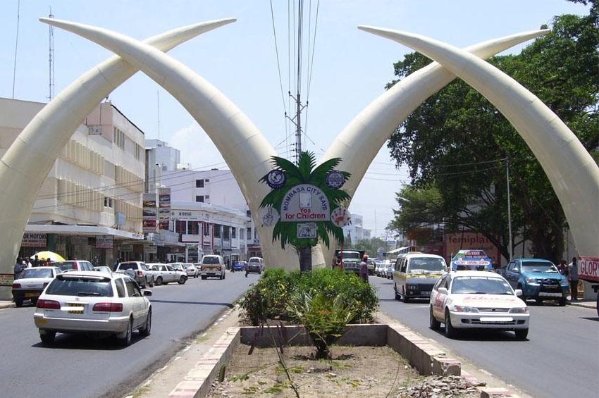 Mombasa's Marine Laughter